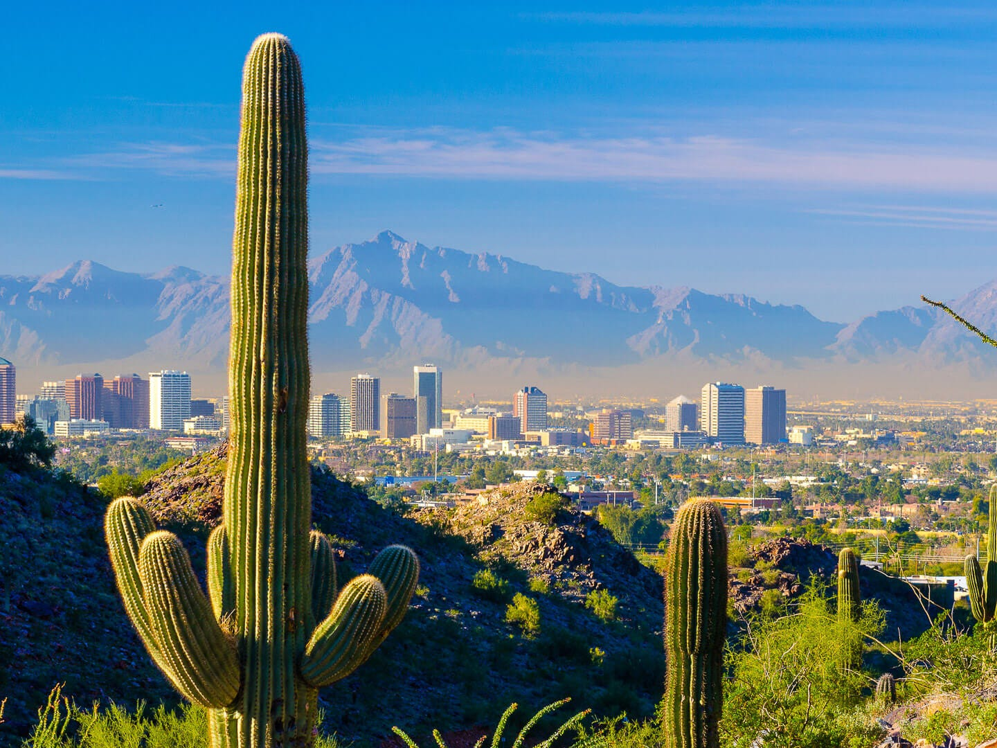 No. 13: Phoenix. Thanksgiving trip cost: $1,160.50. Christmas trip cost: $959. It's relatively affordable to travel to Phoenix over Christmas. Round-trip flights cost an average of $257 — tied with San Francisco for the third-lowest average flight cost compared to other cities in this study. Make your visit to Phoenix merry by catching a professional ice skating performance at the Westgate Entertainment District or walking among thousands of lights at the Desert Botanical Garden.