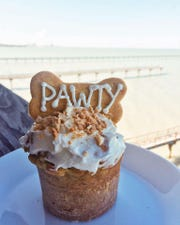 "Texas Doggie Bakery offers ""frosted pawty muffins"" in banana apple or berry flavors."