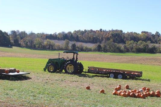 Boyds Pumpkin Patch Tractor