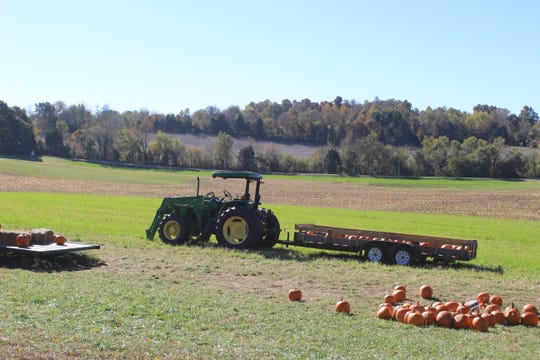 The view across Highway 76 from Boyd's Pumpkin Patch.