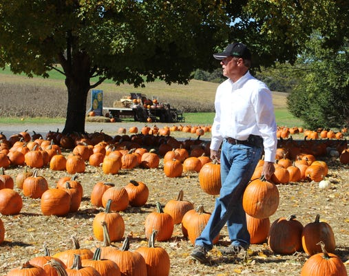 Boyd Moving Pumpkins 2