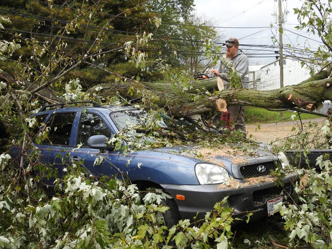 Eric Conrad of On a Limb Tree Service cuts sections of an oak tree that fell Sunday at 343 N. Second St. and damaged two vehicles.