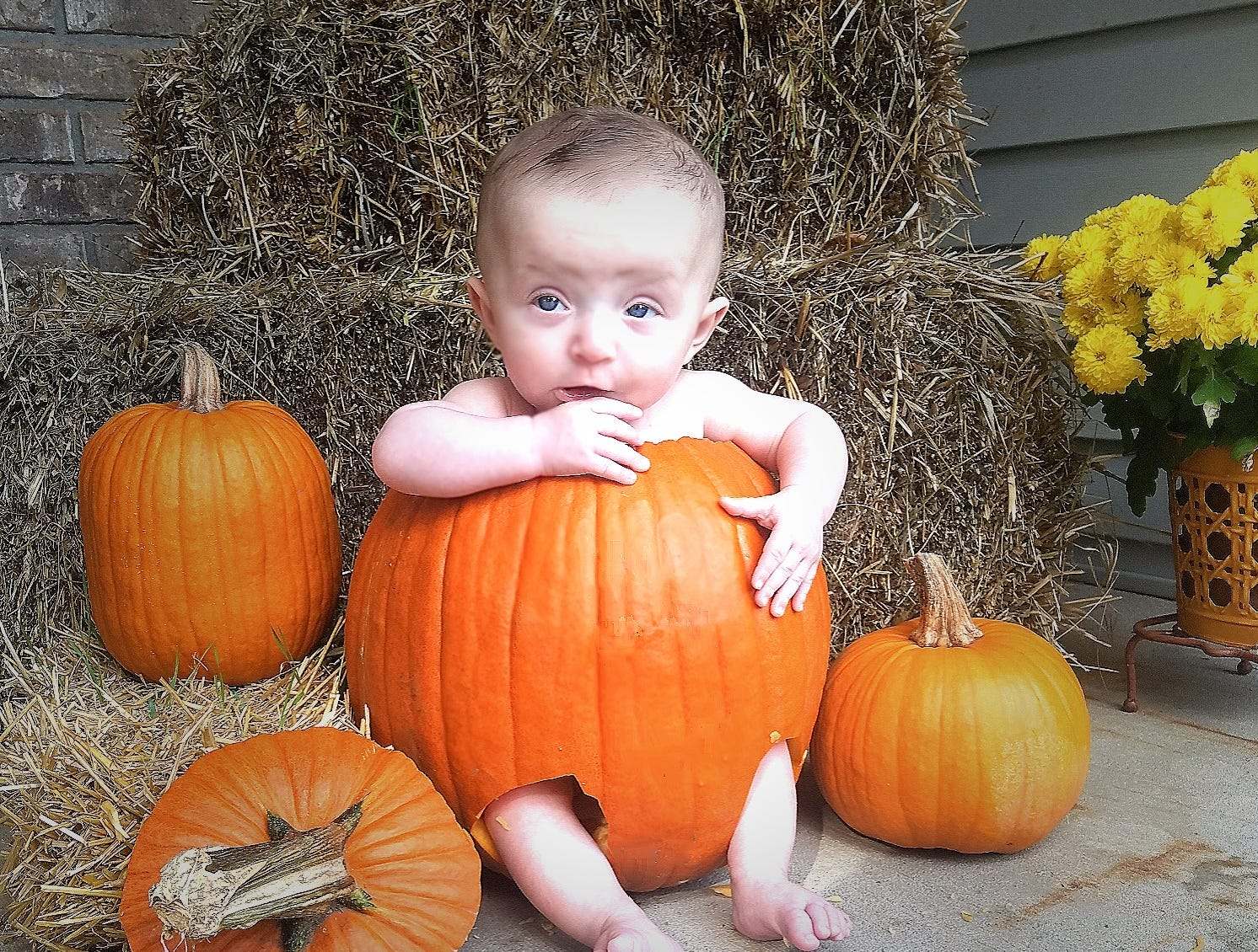 Peyton Schmunk, 5 months. Parents are Mike and Danielle Schmunk of Oshkosh.