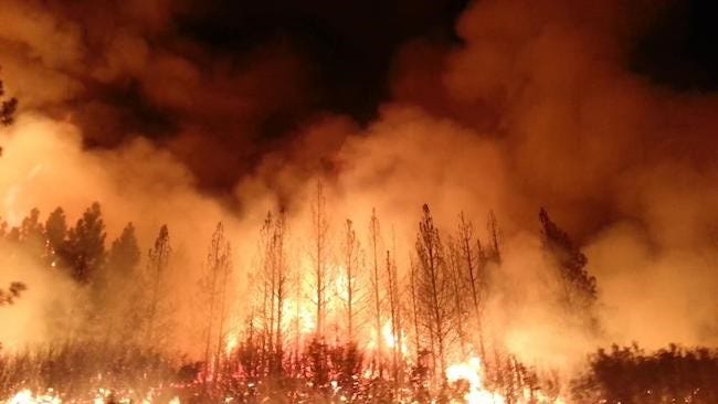 Wildfires are increasing in intensity