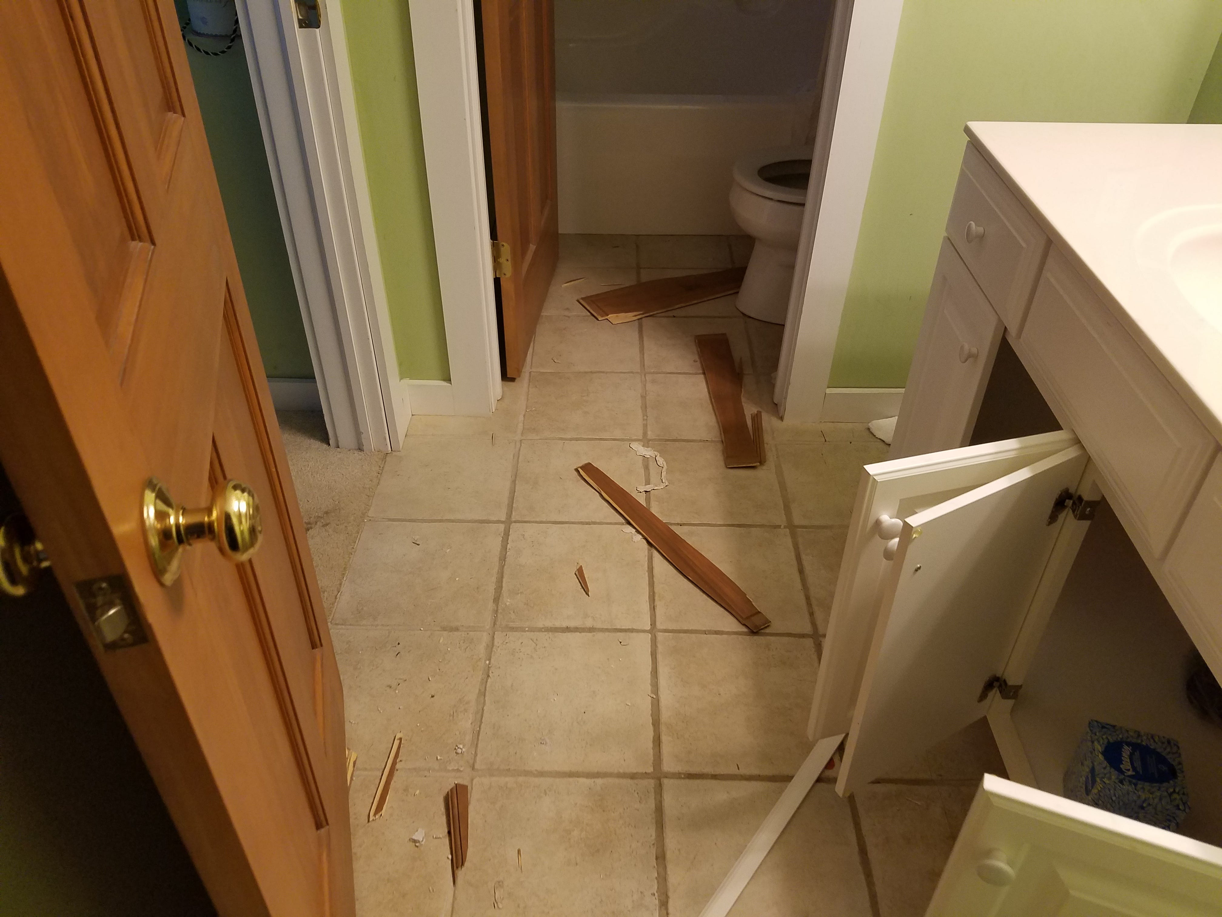 Over the course of one weekend in 2017, the University of Iowa fraternity Sigma Nu caused nearly $108,000 in damage across 28 rental houses in Galena, Illinois.  Photographs of some of the rental properties were provided to the Jo Daviess County Sheriff's Department at the time. They give a small glimpse into what the damage looked like.