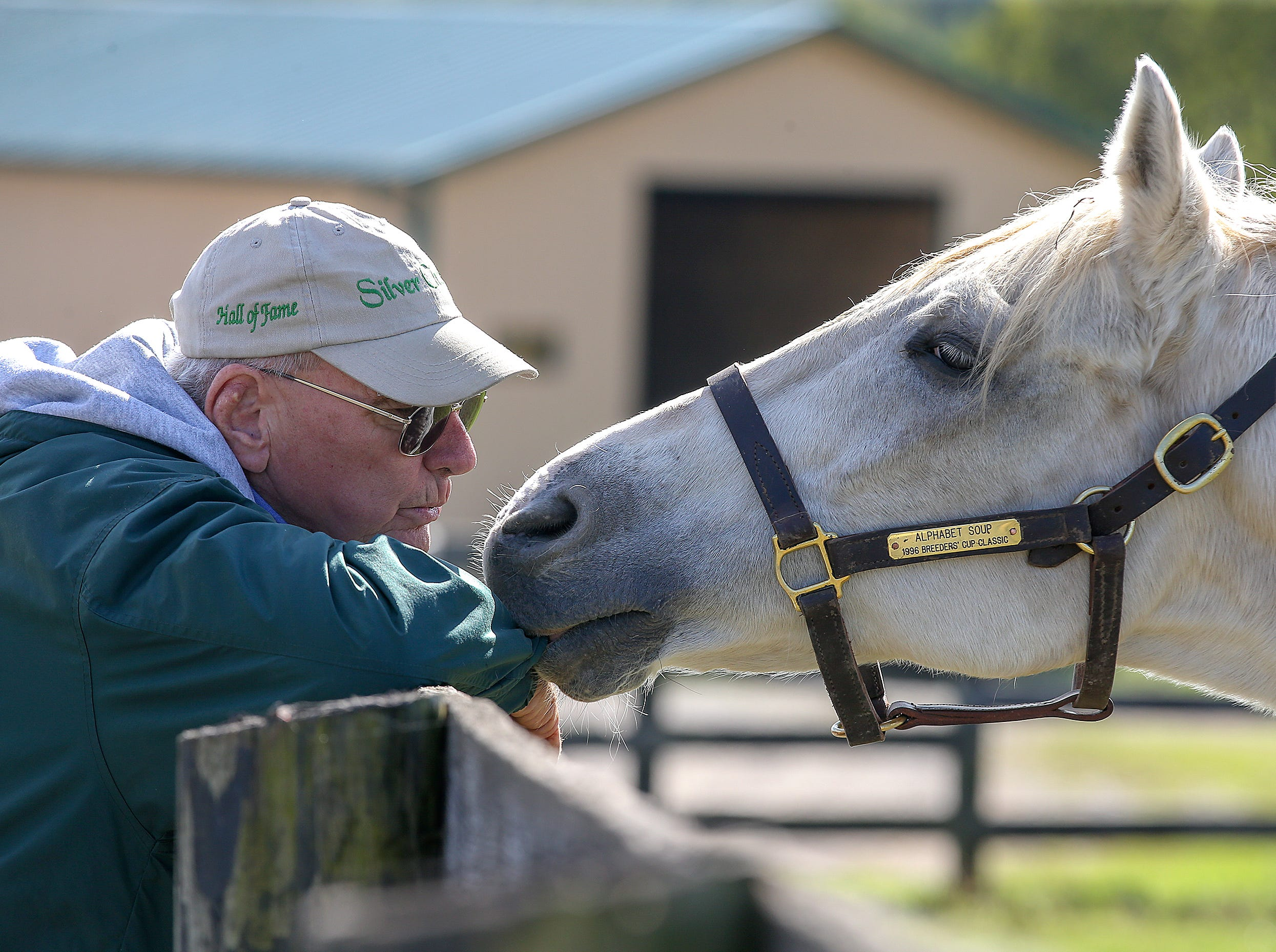 Alphabet Soup won the Breeders Cup Classic in 1996 and hangs out with Michael Blowen, founder of Old Friends Farm.October 11, 2018