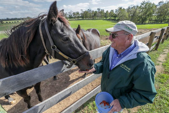 Old Friends Farm founder Michael Blowen with Cajun Beat.