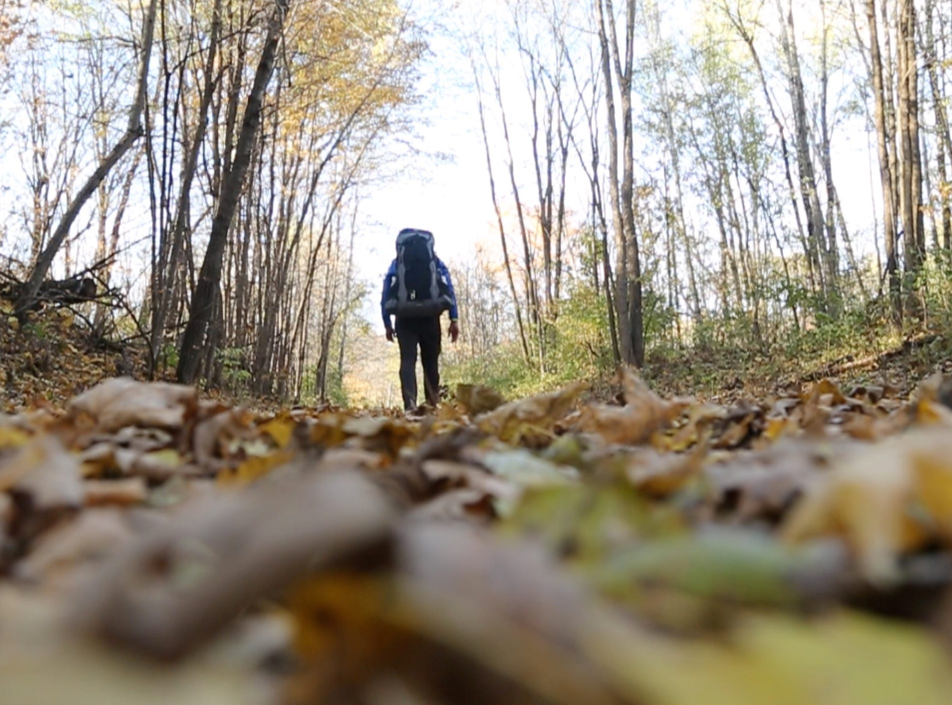 Fallen leaves blanket the Ice Age Trail in northwestern Wisconsin. Eric Larsen hiked the trail as part of his 500-mile Wisconsathon journey across the state.