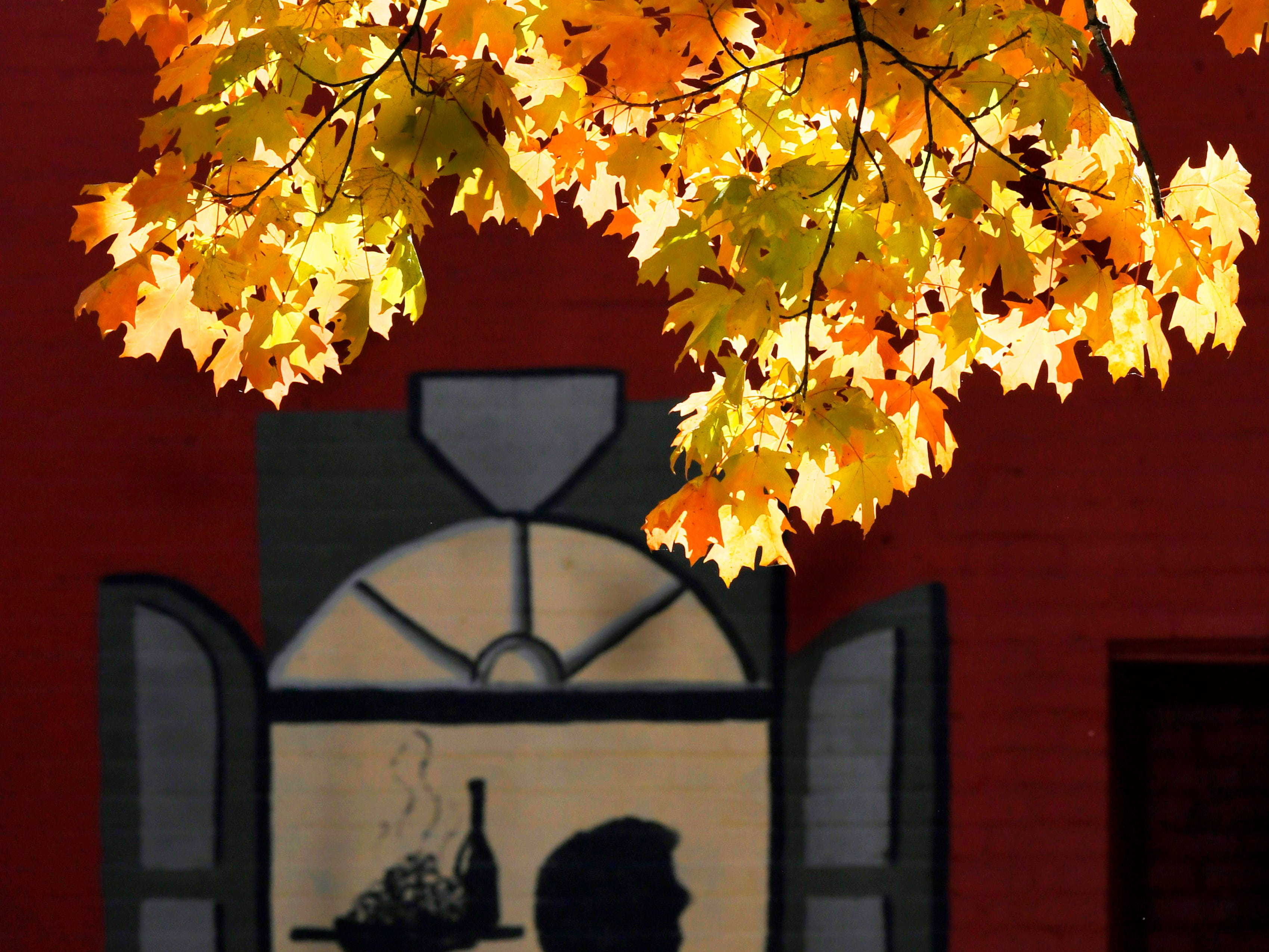 Leaves begin to change colors next to Zolo Italian restaurant in downtown Franklin on Tuesday, Oct 30, 2018.