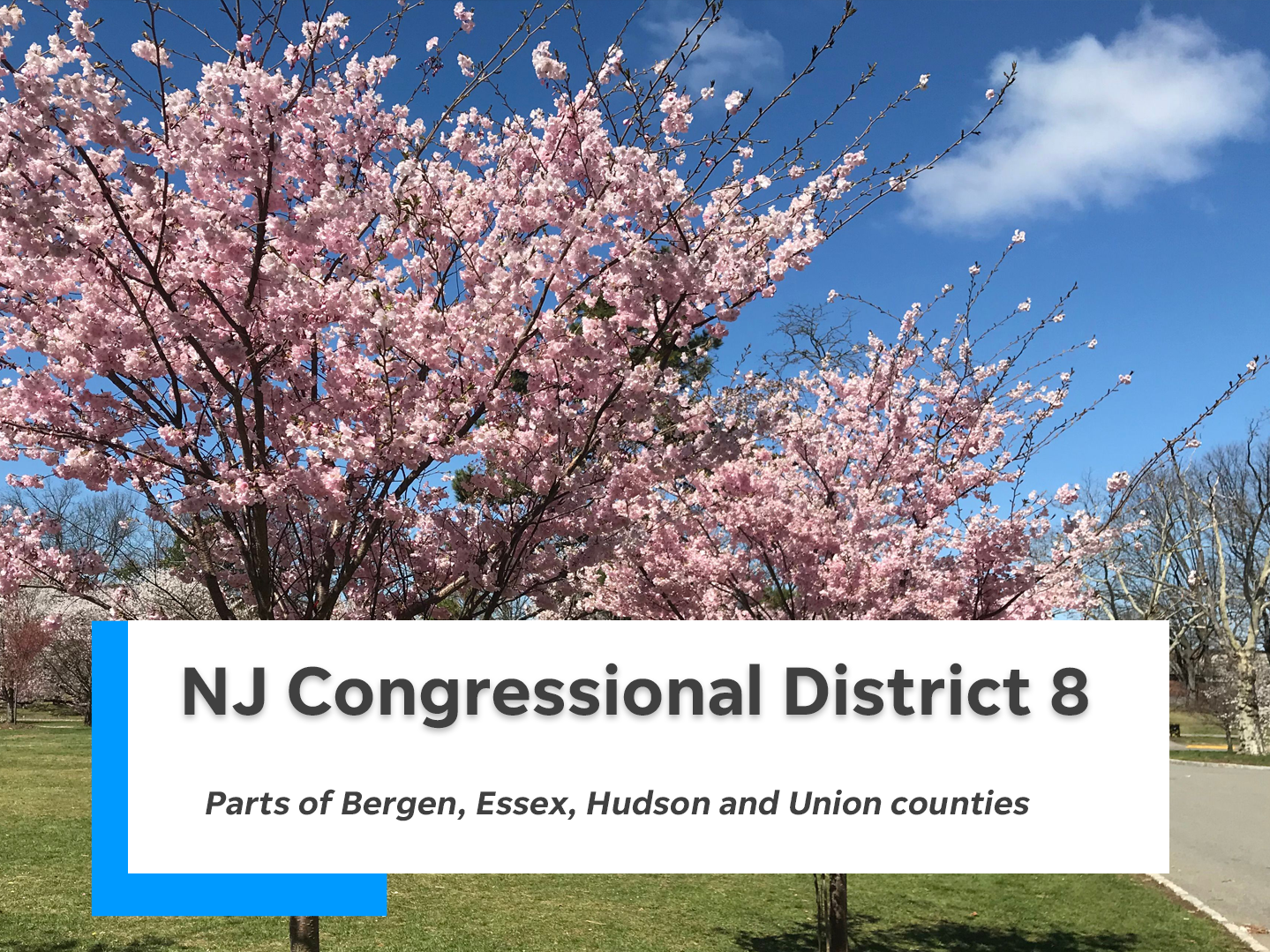 NJ's eighth congressional district is comprised of parts of Bergen, Essex, Hudson and Union counties