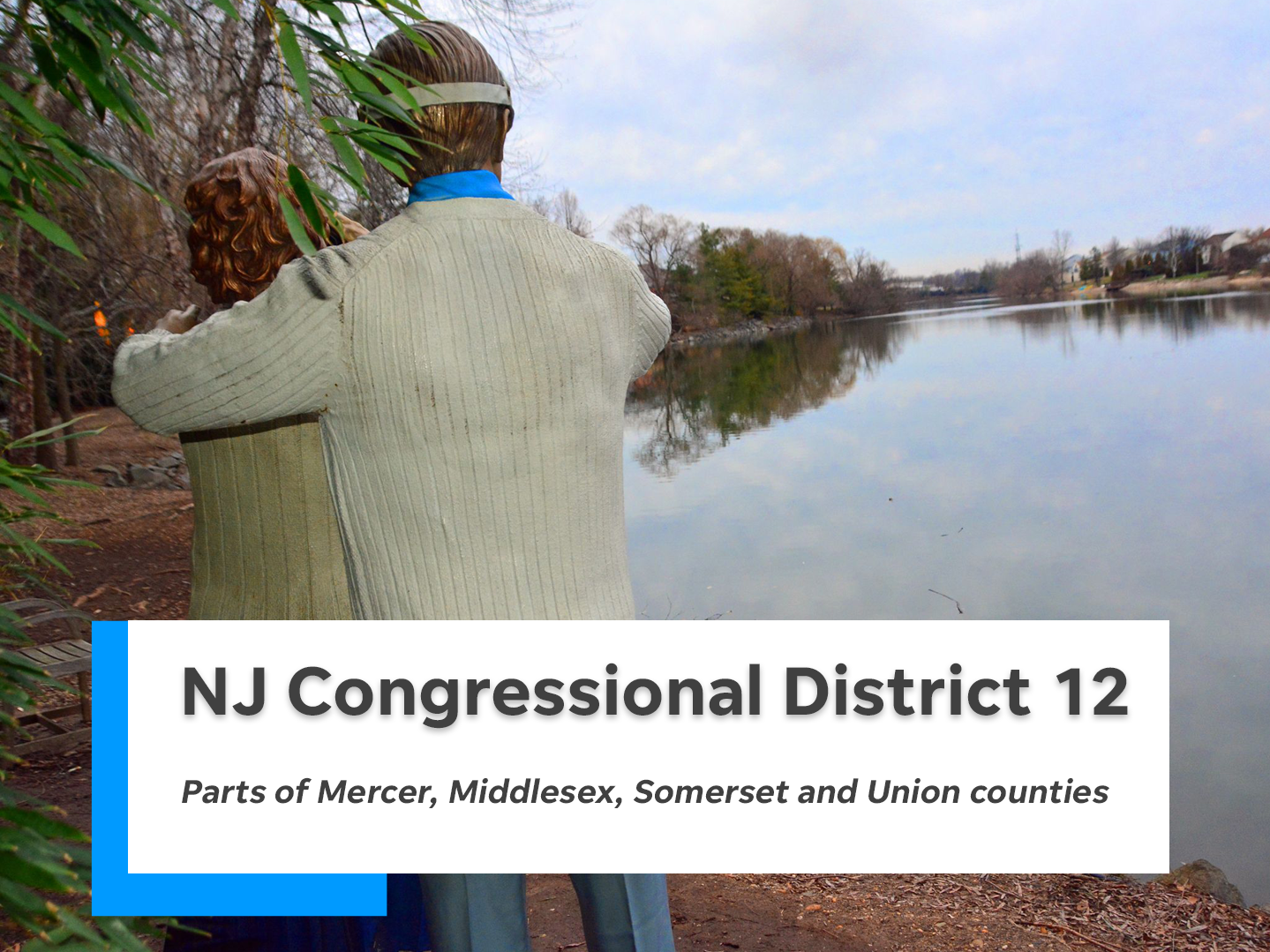 NJ's 12th congressional district is comprised of parts of Mercer, Middlesex, Somerset and Union counties.