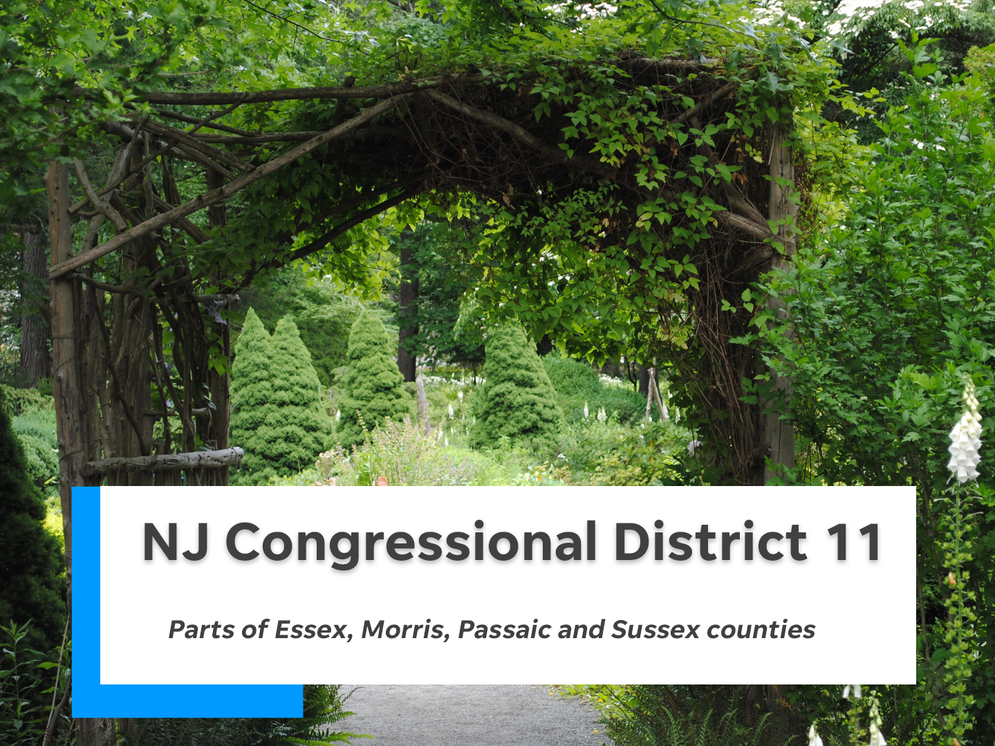 NJ's 11th congressional district is comprised of parts of Essex, Morris, Passaic and Sussex counties.