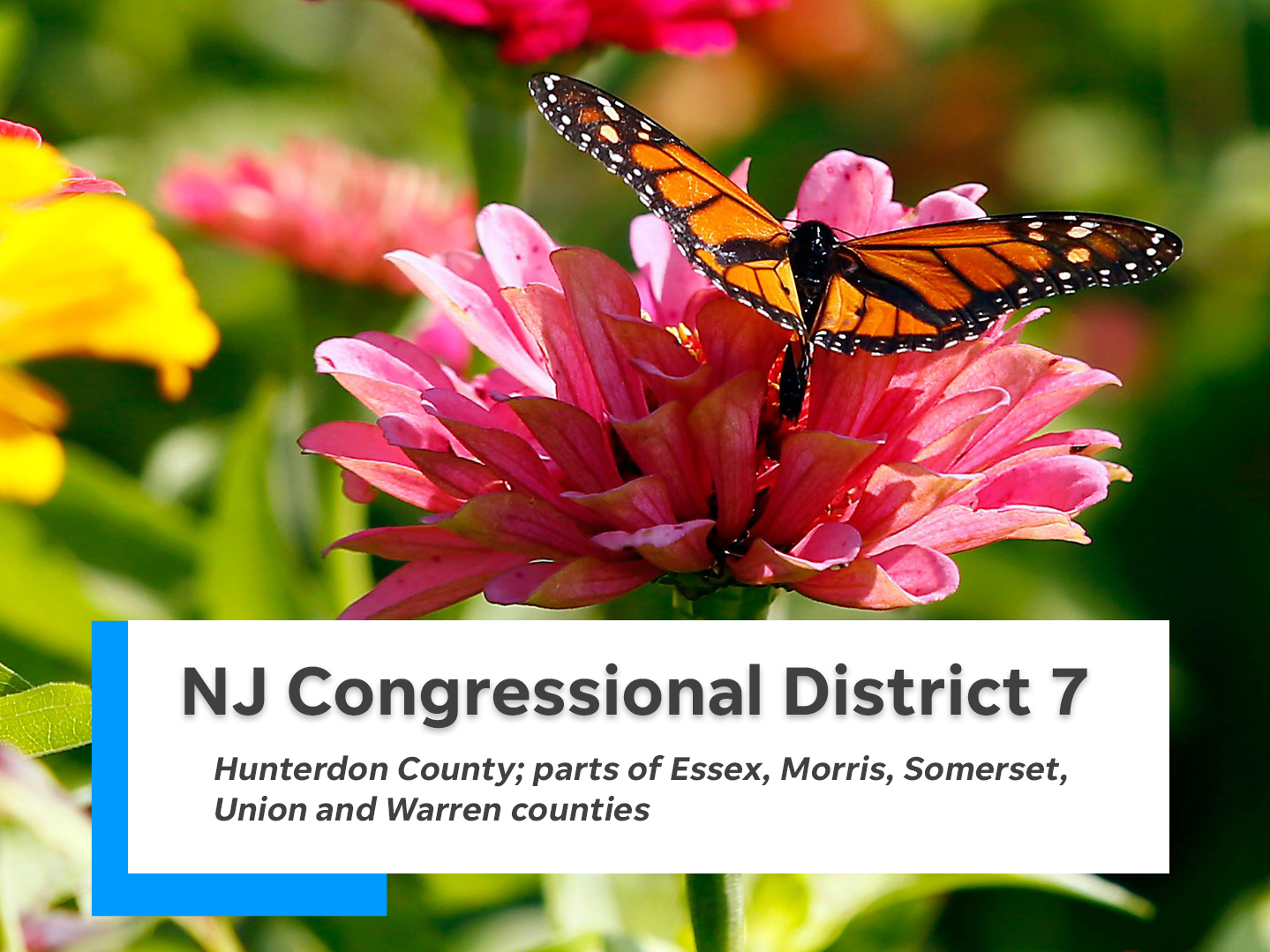 NJ's seventh congressional district is comprised of Hunterdon County and parts of Essex, Morris, Somerset, Union and Warren counties.