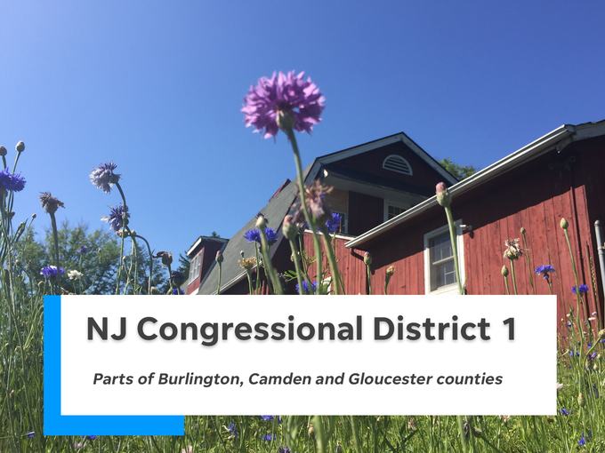 NJ's first congressional district is comprised of parts of Burlington, Camden and Gloucester counties.