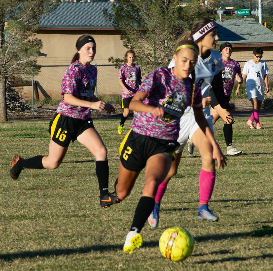 Lady Tigers soccer finish season with two division wins