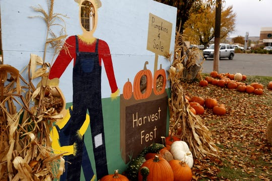 The St. Mary's Catholic Church Youth Group is selling pumpkins to raise money for upcoming trips, including an excursion to Panama in January.