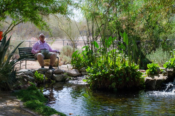 There are many misconceptions about Koi ponds, but there's no mistaking their relaxing appeal.