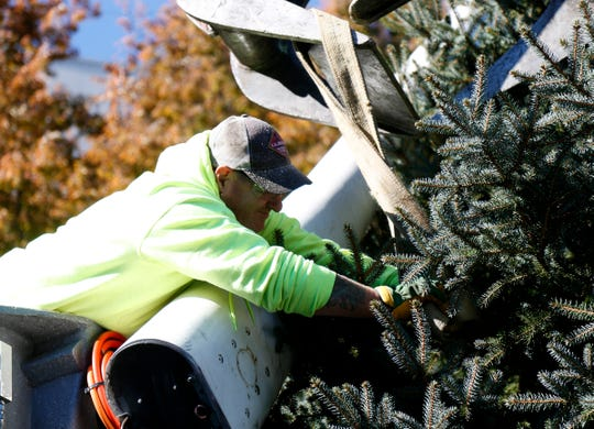 Lewis Peterson of the City of Poughkeepsie DPW removes the lifting strap for the city's Christmas Tree after placing it in Mural Square on October 30, 2018.