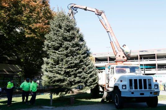 City Of Poughkeepsie Christmas Tree 2018