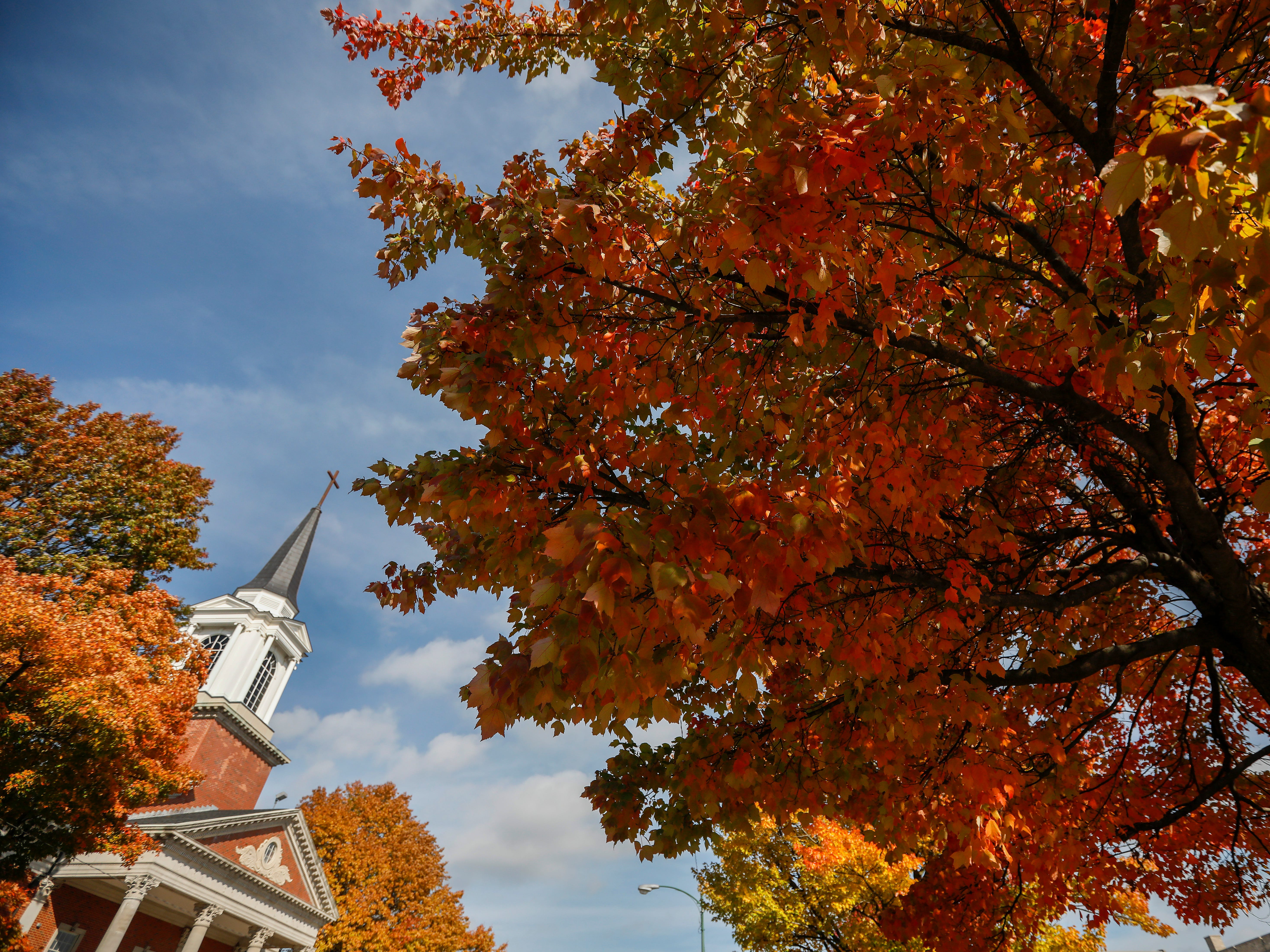 The steeple at the First Baptist Church on South Avenue is framed by some trees with beautiful fall color on Tuesday, Oct. 30, 2018.