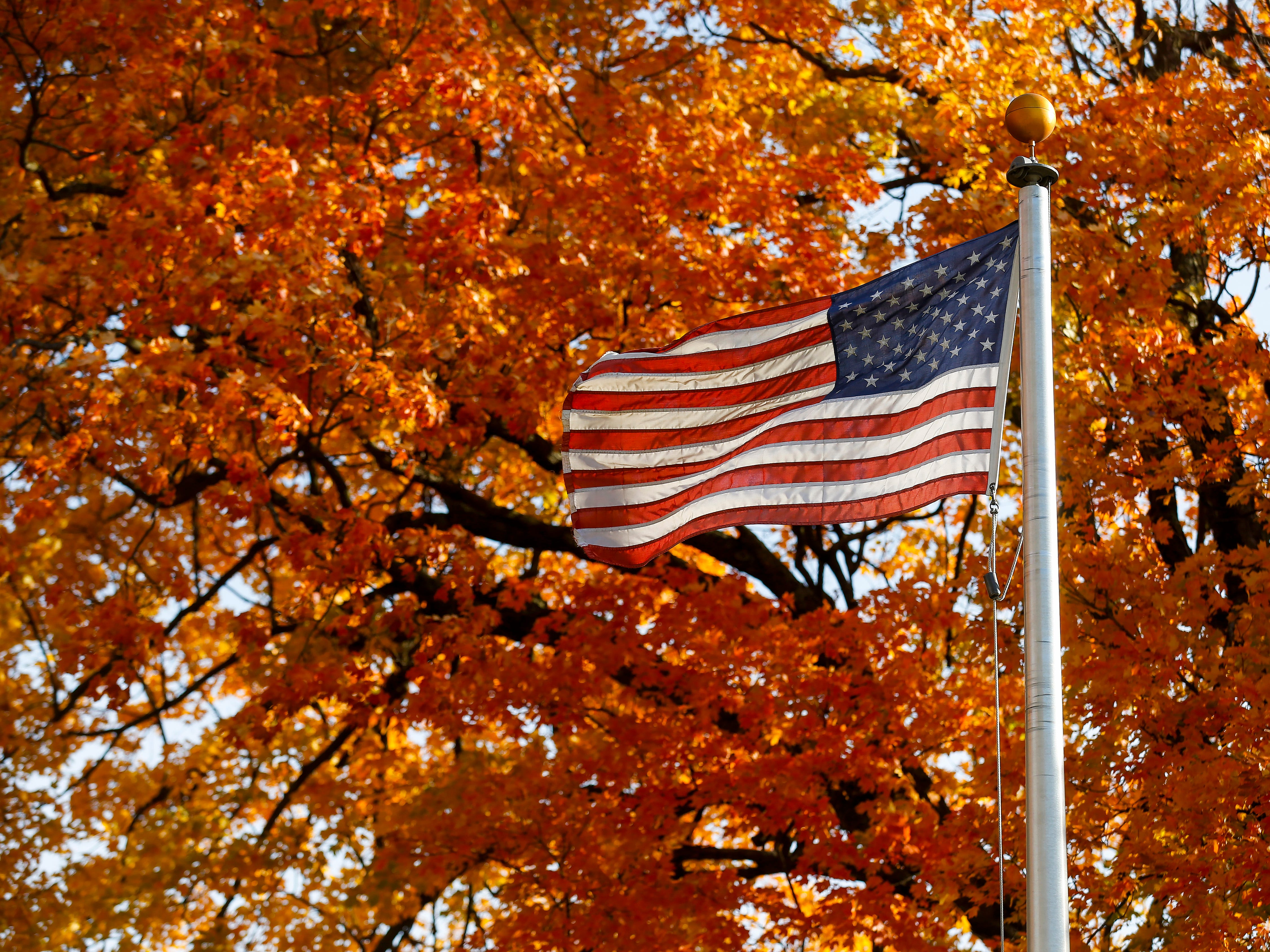 Veteran's Day: For all of us who served and returned