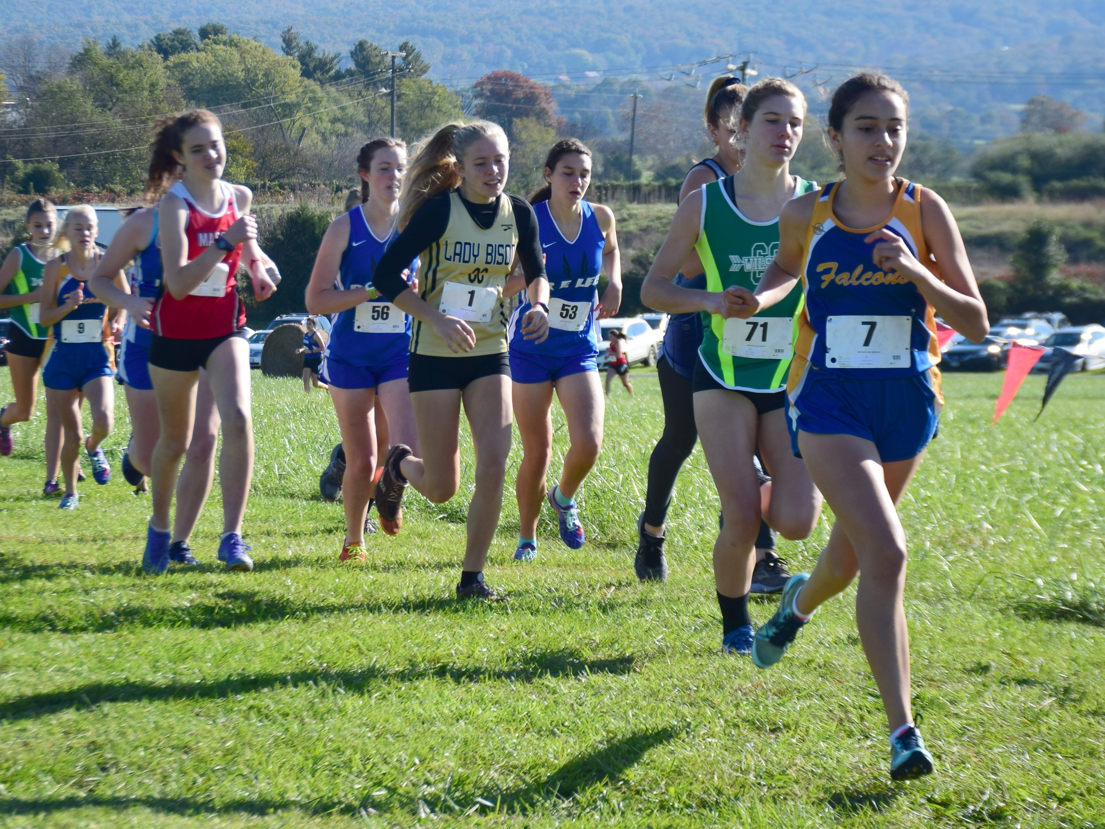 Runners compete in the girls race at the VHSL Class 2, Region B Cross Country Championships on Tuesday, Oct. 30, 2018, at New Market Battlefield Park in New Market, Va.