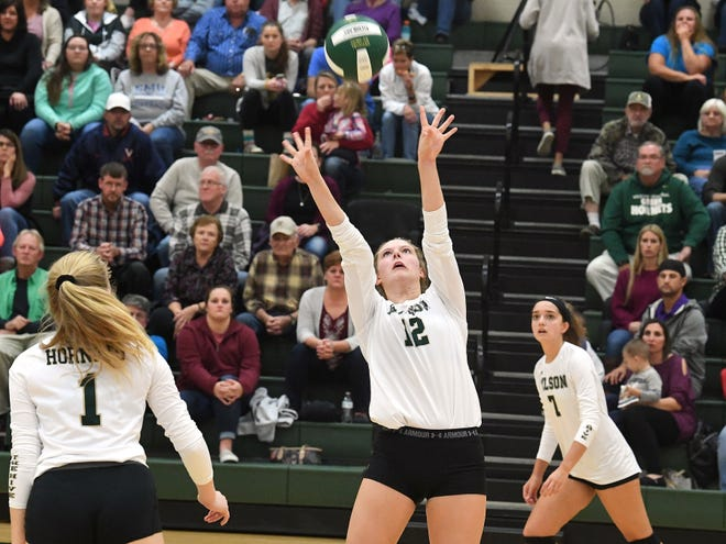 Wilson Memorial's Paris Hutchinson sets the ball during a Shenandoah District championship match played in Fishersville on Monday, October 29, 2018.