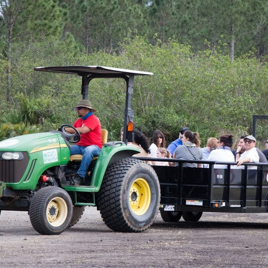 The Bonfire Hayride is Saturday at McCarty Ranch Preserve west of Port St. Lucie.