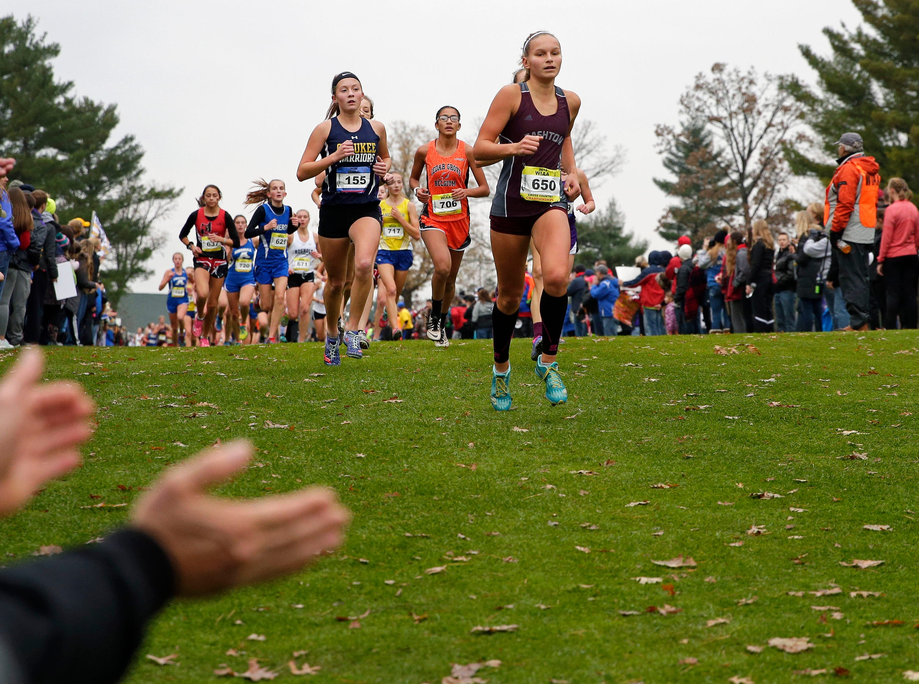 Fans cheer runners on as the 2018 WIAA Cross Country State Meet takes place Saturday, October 27, 2018, at the Ridges Golf Course in Wisconsin Rapids, Wis.Ron Page/USA TODAY NETWORK-Wisconsin
