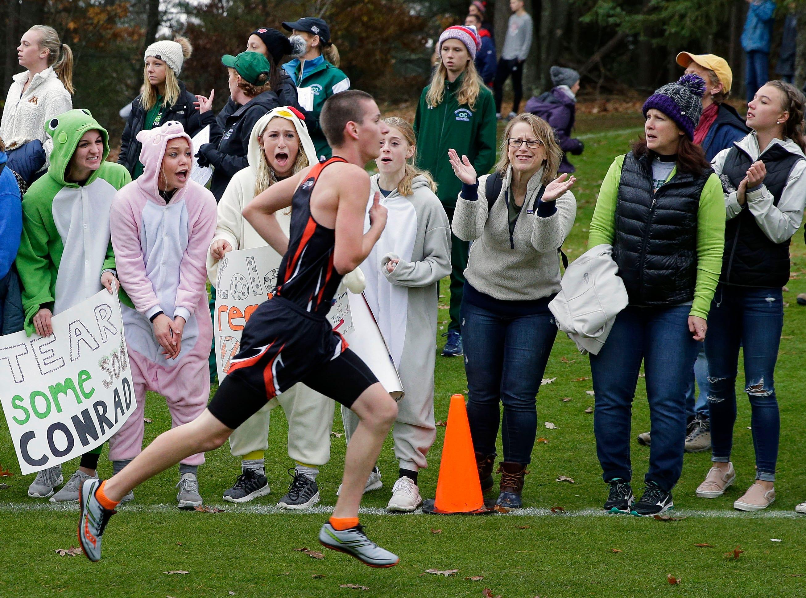 Fans cheer for runners as the 2018 WIAA Cross Country State Meet takes place Saturday, October 27, 2018, at the Ridges Golf Course in Wisconsin Rapids, Wis.