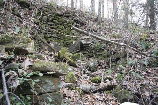 Davidson Sawmill Landscape