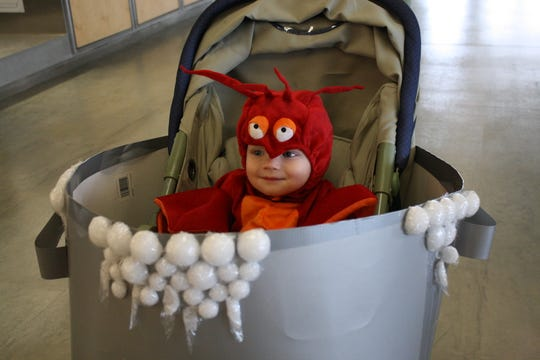 Wyatt Norris, 1, of the Town of Kirkwood dressed as a lobster for Halloween.