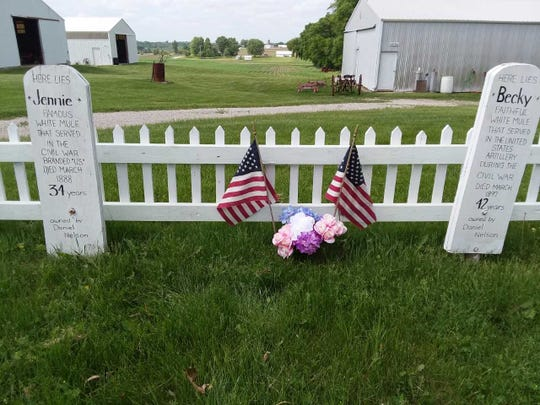 Headstones mark the graves of Jennie and Becky, two mules who served in the Civil War before retiring to an Iowa farm near Oskaloosa.