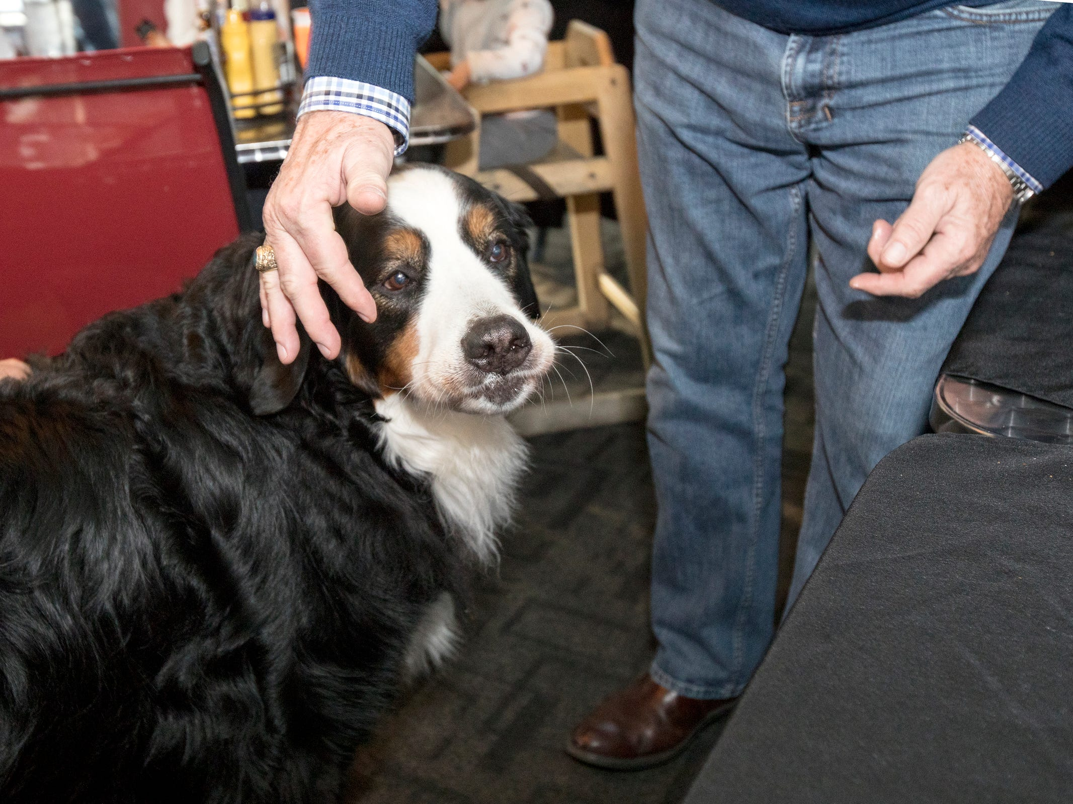 Stella stands with tavern owner Bob Ostendorf during a party for her 8th birthday at Stella's Black Dog Tavern in Plymouth on Monday, Oct. 22, 2018.
