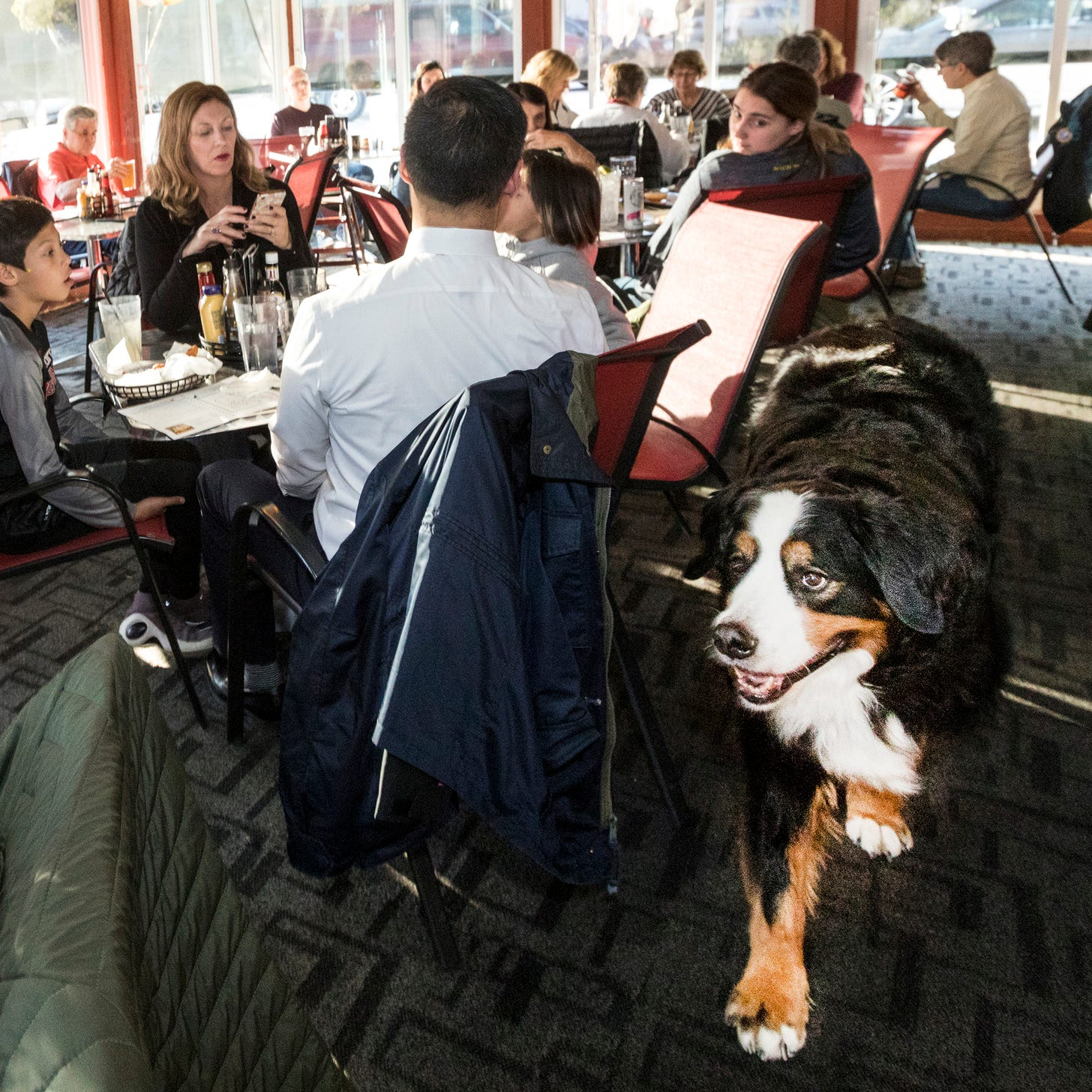 How a one-time auto exec and his dog are changing lives in Plymouth