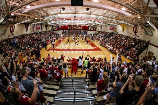 Expanding attendance and re-energizing crowds at IU volleyball games has been a passion project for new coach Steve Aird, who has a hand in promotions, engages students and keeps the atmosphere lively with a DJ and a drum line.