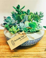 Succulents, cactus and air plants are available at The Prickly Hippie.