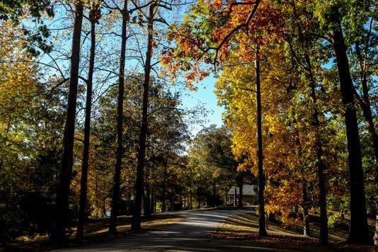 Hpt Natchez Trace Fall Colors 04