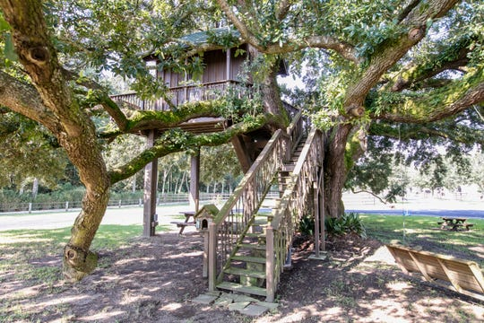The property includes a fabulous tree house and lush green space.