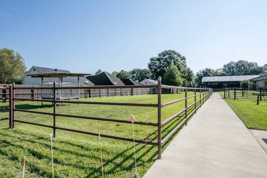 The property is a horse lover's dream.