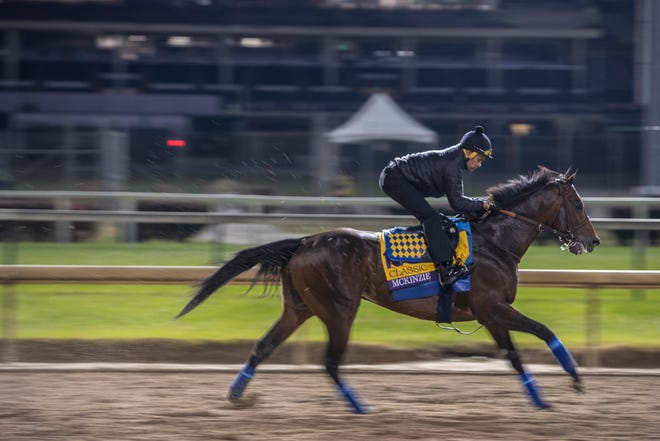McKinzie gallops over the Churchill downs track prior to his race in the Breeders' Cup Classic on Saturday. Oct. 30, 2018.