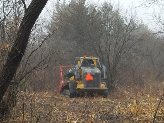 A Department of Natural Resources employee uses machinery to cut brush, including invasive species, as part of a habitat improvement project at Bluff Creek State Natural Area in Walworth County.