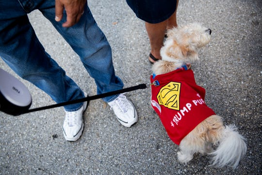 "Larry Bergere's dog Lola wears a cape that says ""Trump pup"" before a Trump rally on Wednesday, October 31, 2018, at Hertz Arena in Estero. This was Lola's first Trump rally, but Bergere says it won't be her last."