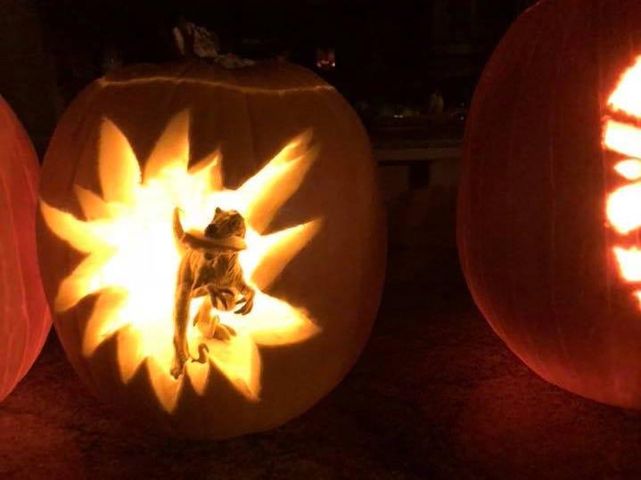 Pumpkin by Ellen Carson.
