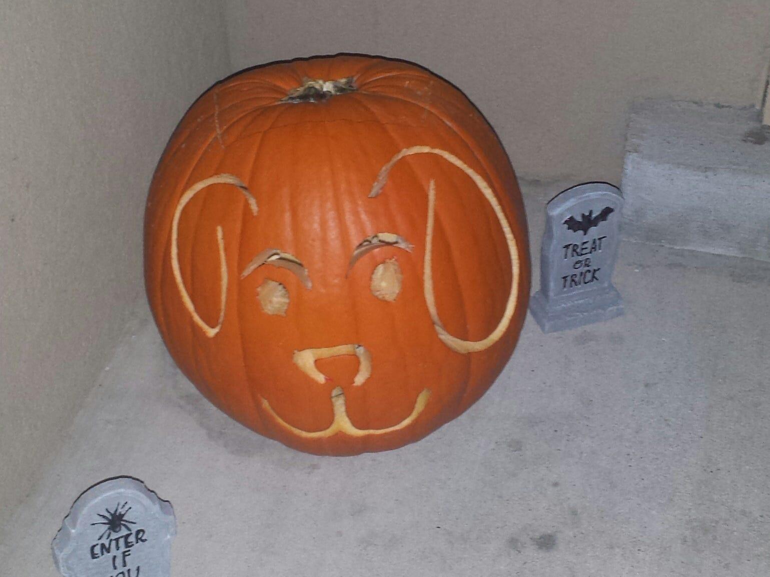 Pumpkin by Evan Smith and Maddie Strom.