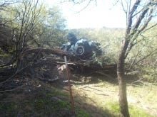A 53-year-old woman survived six days before being rescued after her vehicle drove off U.S. 60 in Wickenburg on Oct. 12, crashed through a fence, dropped 50 feet and landed in a mesquite tree.