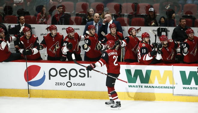 Arizona Coyotes' captain Oliver Ekman-Larsson reacts after scoring a goal against the Ottawa Senators in the third period on Oct. 30, 2018 at Gila River Arena.