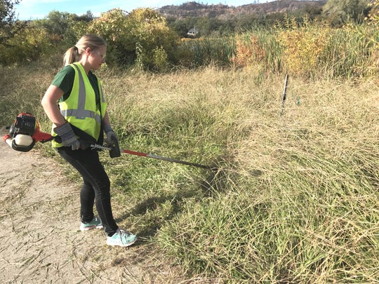 Bethel student Edith Kortekangas of Finland uses a weed wacker to chop down tall grass near Mary Lake in west Redding. Nearly 60 of the church's students went to the subdivision Oct. 26 to remove dead trees and brush singed in the Carr Fire and cut down grass to reduce fire danger.