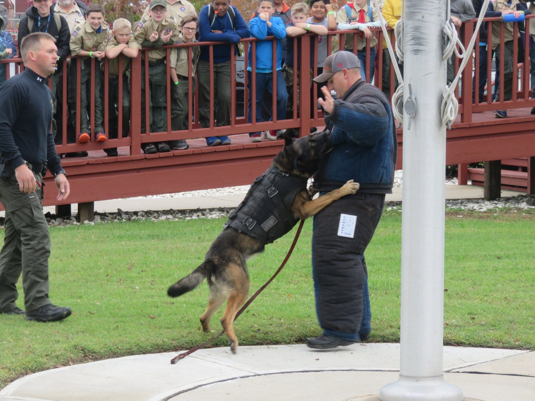 The Accomack County Sheriff Office K-9 Unit holds a demonstration for the Scouts at their camporee in Chincoteague.