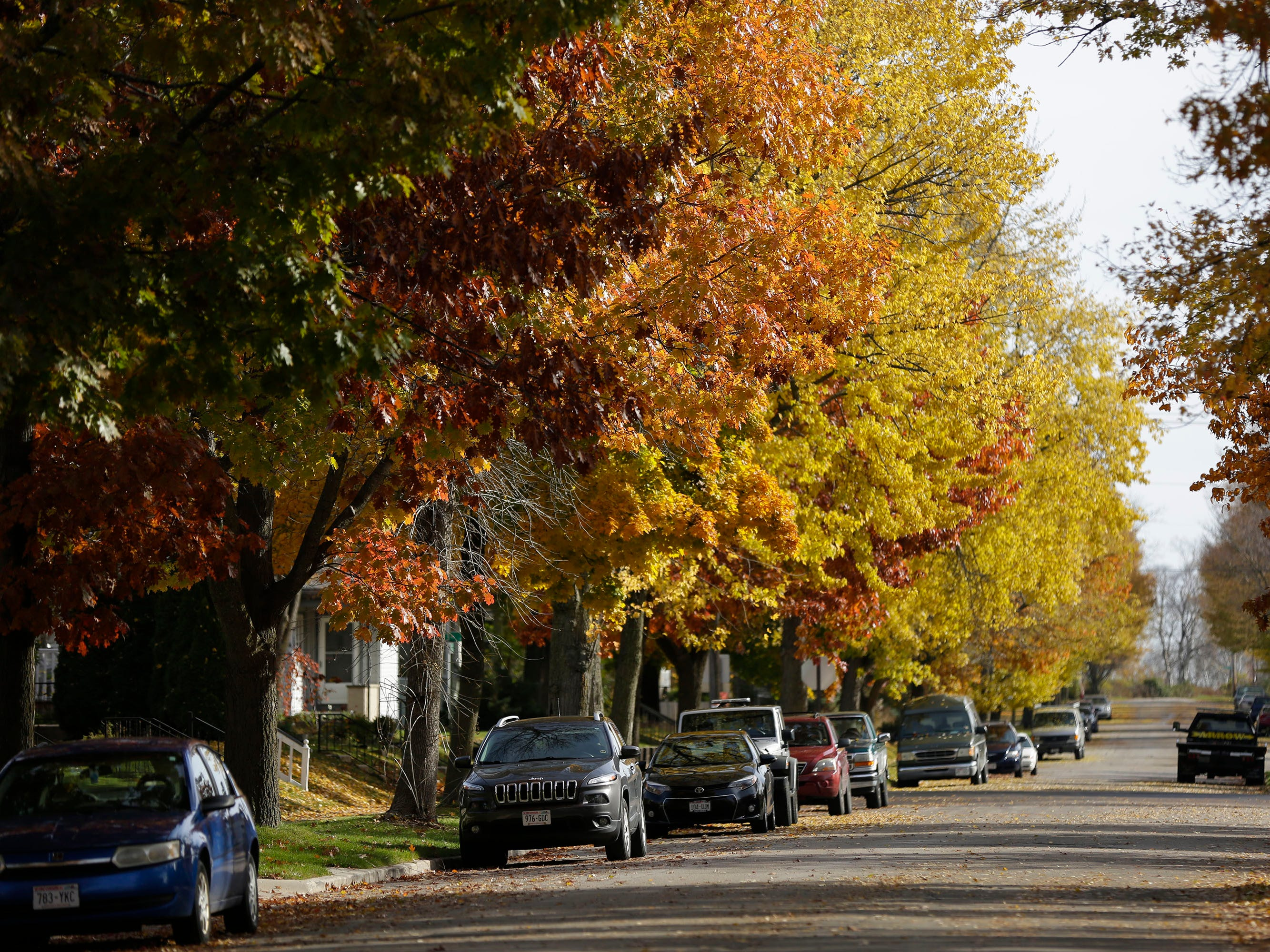 A view of fall color down Lincoln Avenue, Wednesday, October 31, 2018, in Sheboygan, Wis.